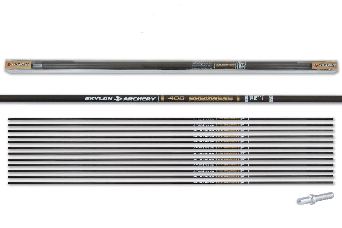 Skylon Target Pfeilschaft Carbon Preminens 650